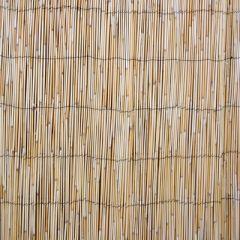 Rull pillirooaed IN GARDEN, 2x5m